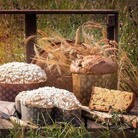 Immagine di CEREAL'EAT LIEVITATI KG 10