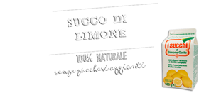 Picture of SUCCO LIMONE SURG. S.GATTO KG.3 CTX4PZ